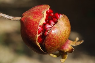 Pomegranate : Nutrition and Benefits