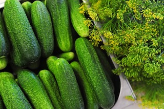 Cucumber: Nutrition and Benefits
