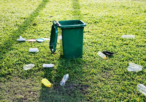 How to become environmentally friendly - Do not Litter