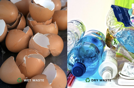How to become environmentally friendly - Segregate Wet and Dry Waste