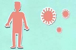 Immunity and The Immune System